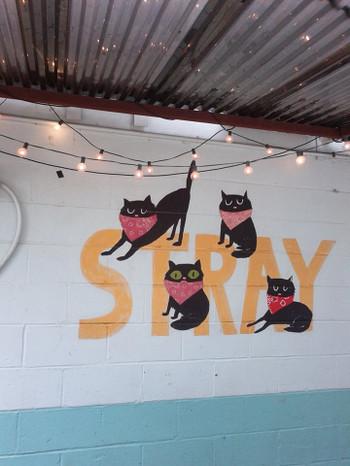 Stray_cats_2